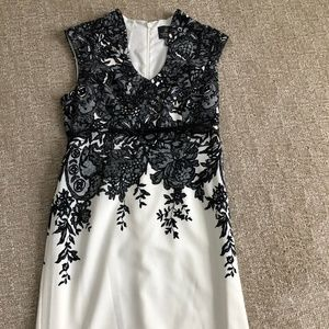 Adrianna Papelli Dress